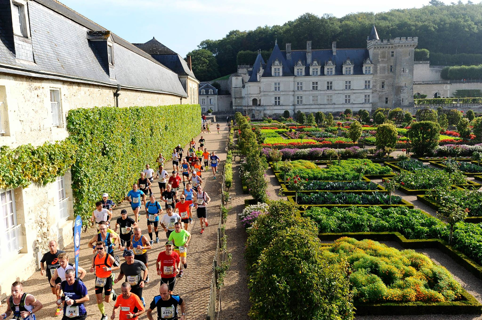 Marathon Touraine Loire Valley